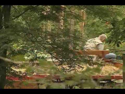 Embedded thumbnail for Naturfriedhof Bergerboos